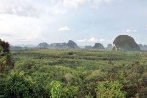 Din Daeng Doi view point